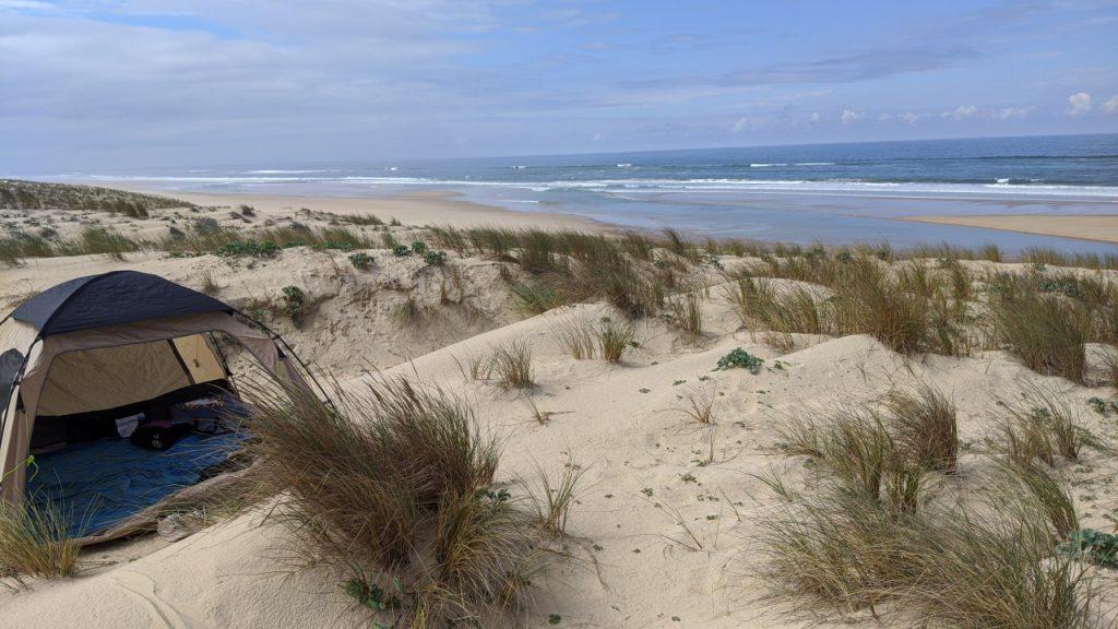 Die Atlantik Küste mit einer Strandmuschel in den Dünen