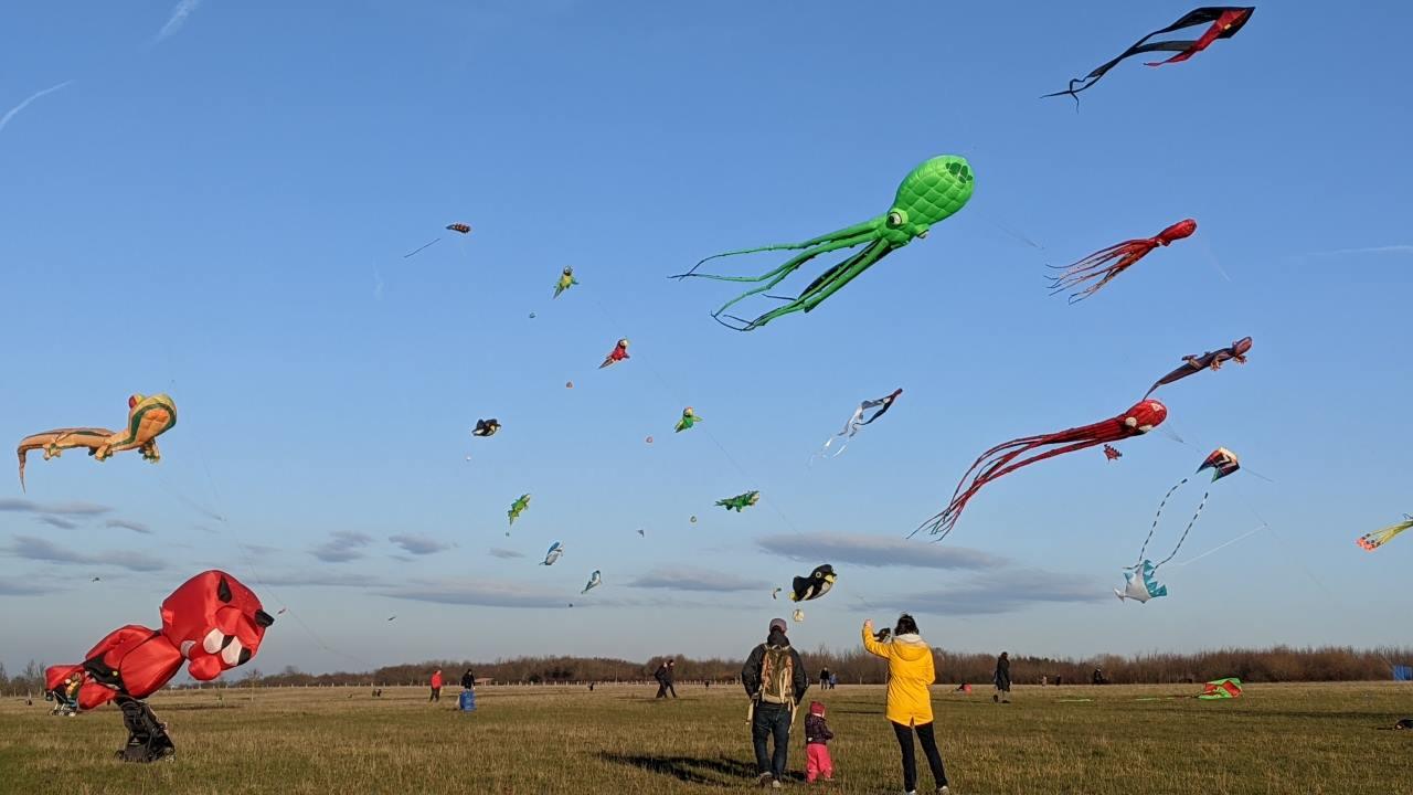 Drachen mit unterschiedlichen Farben flattern im Wind auf dem Kronsberg Hannover