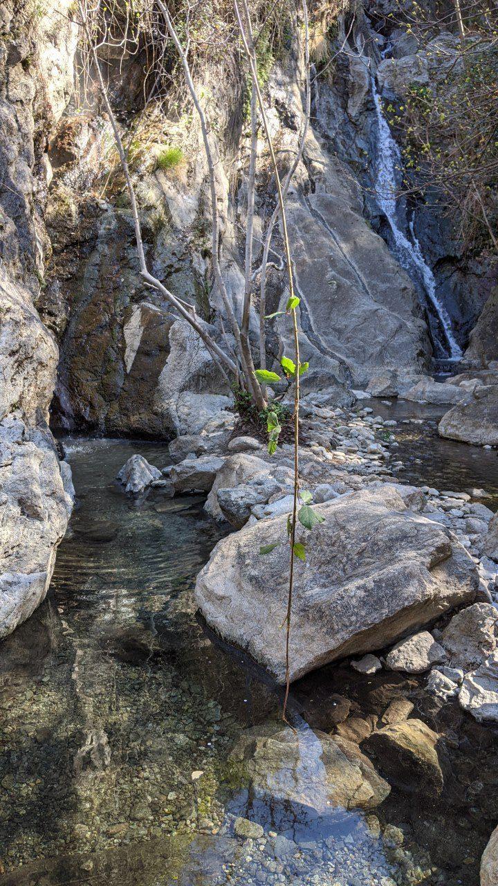 Heiße Quelle mit 40 Grad in Thues-les-Bains im Torrent de Faget