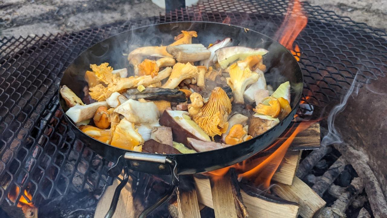 Eine Pilzpfanne brutzelt auf einem offenem Holzfeuer