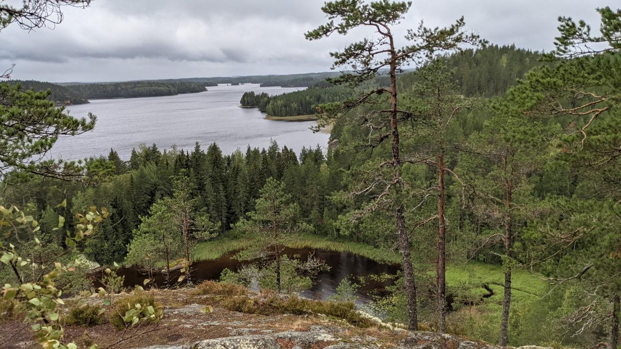 Übersicht Wald und Seen in Finnland an einem bewölkten Tag
